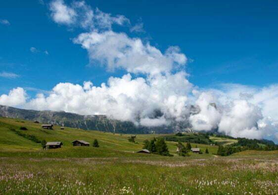 Mezza maratona Alpe di Siusi